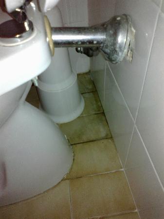 Residence Nido Verde: Pulizia bagno
