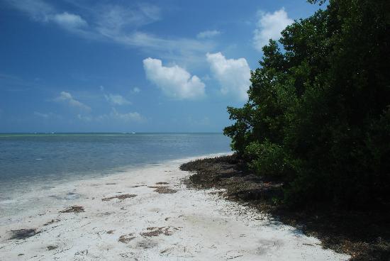 Anne's Beach: La spiaggia