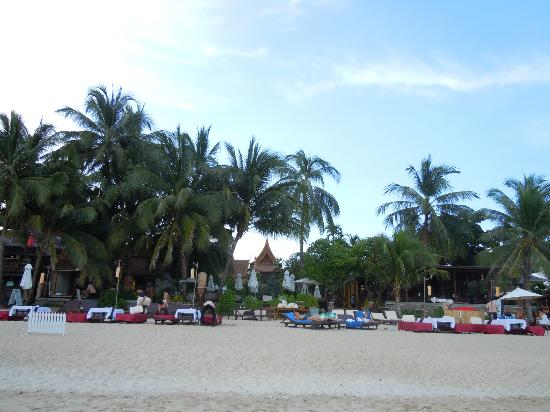Thai House Beach Resort: Looking towards Thai House
