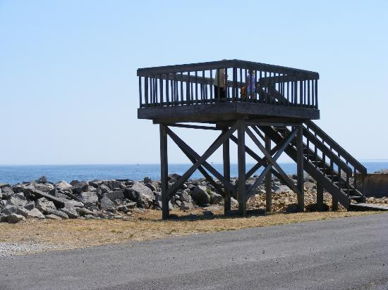 Sawmill Creek Resort: Look out Tower over Lake Erie