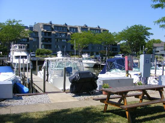 Sawmill Creek Resort: Marina and Condo's
