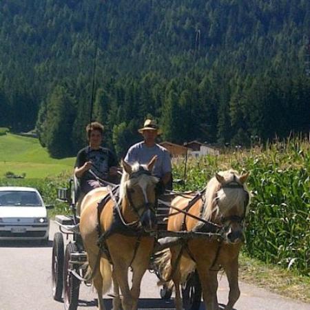 Hotel Post Tolderhof: in carrozza a lezione con hannes fantastico!!!!!!!!!!