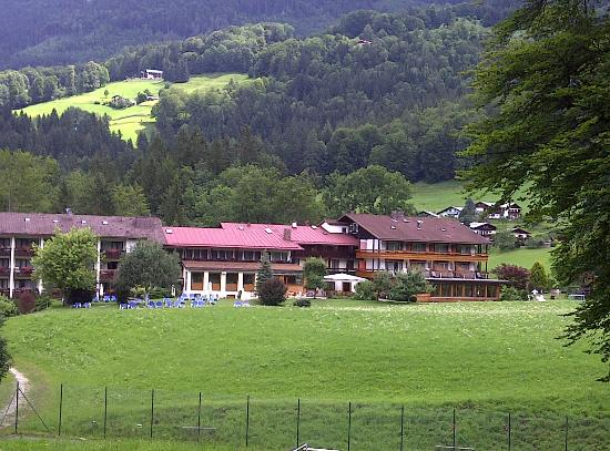 Alm- & Wellnesshotel Alpenhof: Hotel view from the woods