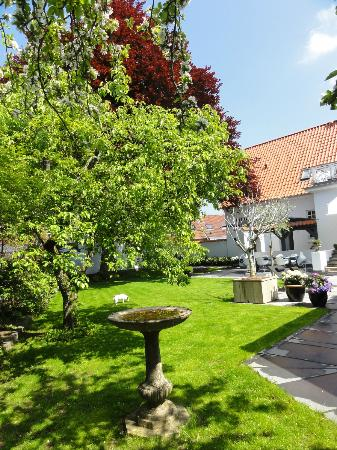 Bed & Breakfast The Old Chestnut Tree Silkeborg