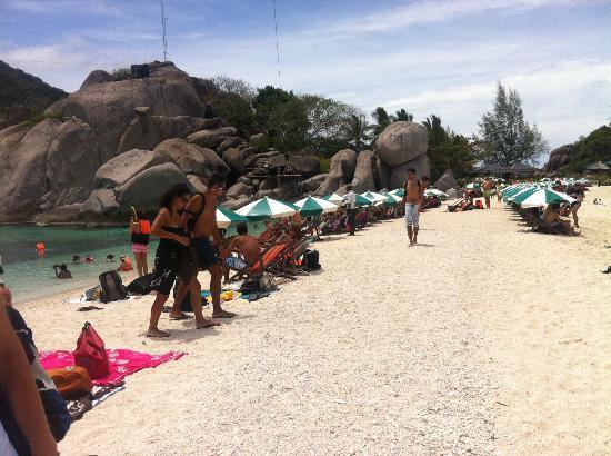 Nangyuan Island Dive Resort: La spiaggia presa d'assalto dai turisti