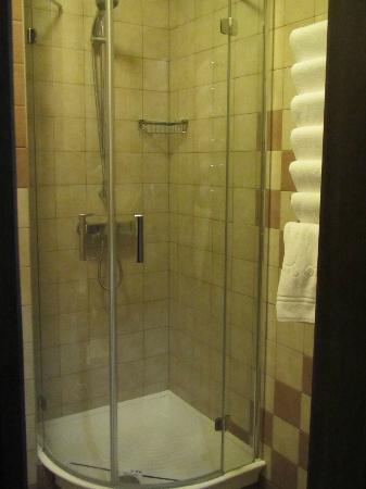 Park-Hotel Golosievo: shower