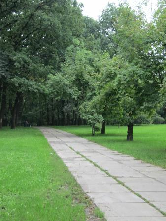 Парк-отель Голосеево: this picture was taken in a park in which the hotel is situated