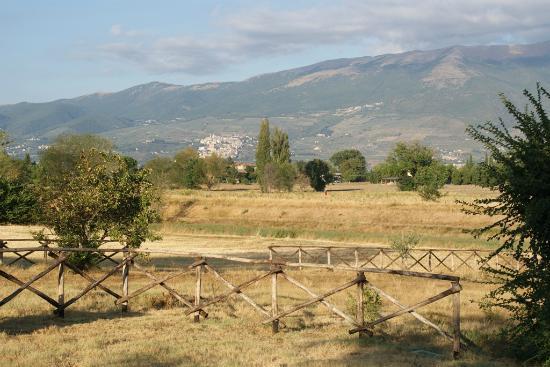 Agriturismo Tenuta Stella: Vista dal parcheggio dell'agriturismo