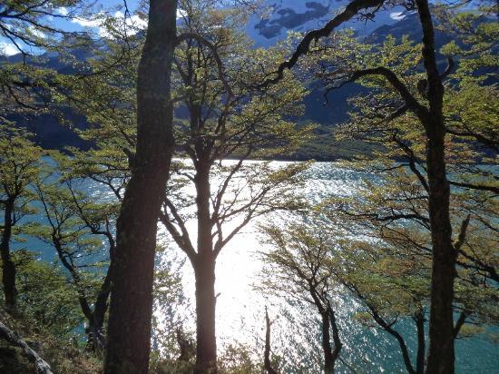 Aguas Arriba Lodge : Vista desde un camino que costea el lago llegando al Lodge