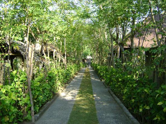 Hotel Tugu Lombok : Pathway to the Kampang Bungalows