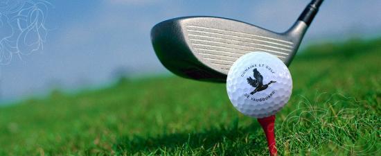 Domaine et Golf Vaugouard : Golf