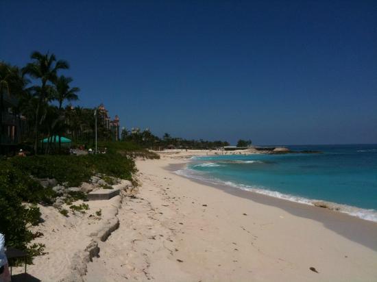 Atlantis - Harborside Resort: Beach