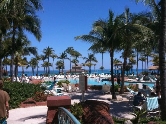 Atlantis - Harborside Resort: Pool