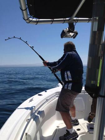 Kingsbrae Arms: Shark fishing for research tagging with St. Andrews Sport Fishing Co.