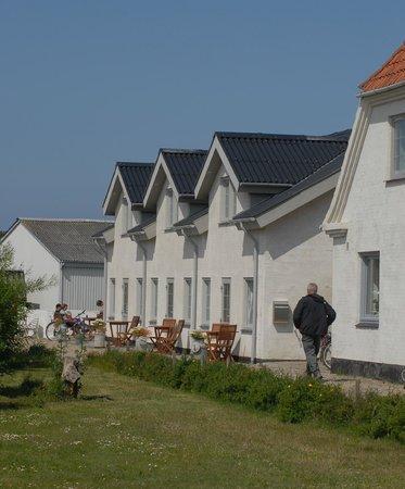 B&B Mandø: Dejligt med mulighederne for udendørshygge i gedigne og rustikke omgivelser lige uden for døren.