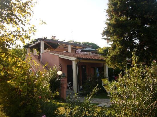 Case per Vacanze Le Pitte : terrazza dell' appartamento