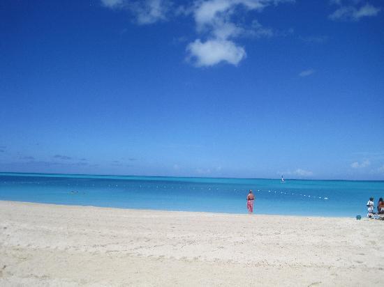 Starfish Jolly Beach Resort: spiaggia
