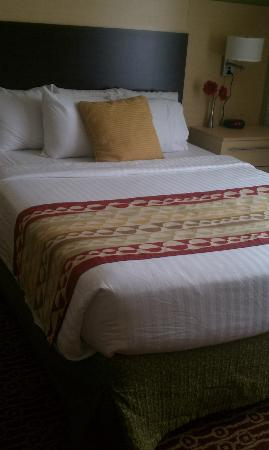 TownePlace Suites By Marriott Wilmington / Wrightsville Beach: COZY!