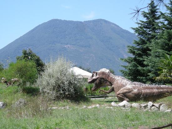 San Lorenzello, Italia: Sullo sfondo MONTE ACERO