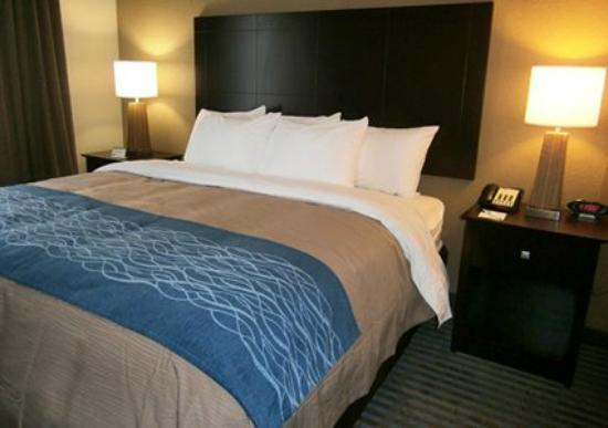 Comfort Inn & Suites Smyrna: King Suite