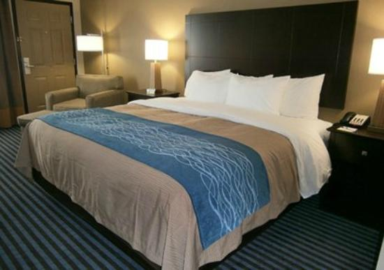 Comfort Inn & Suites Smyrna: Standard King Room