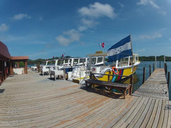 CoCo View Resort: Boat Dock