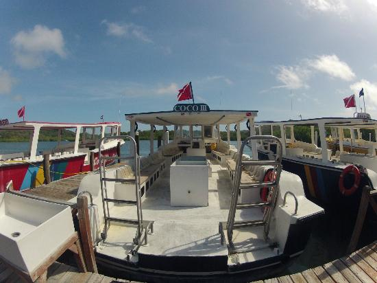 CoCo View Resort: Our Dive Boat