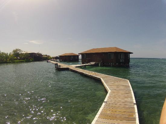 CoCo View Resort: Bunglow buildings