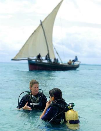 fundu lagoon : Diving