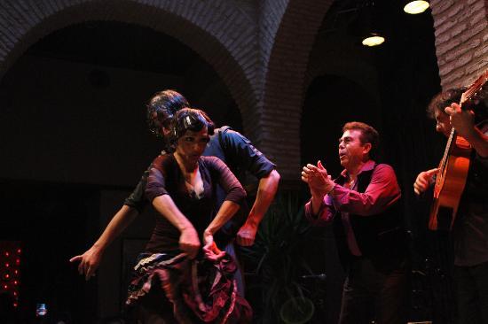 https://media-cdn.tripadvisor.com/media/photo-s/02/ce/54/81/museo-del-baile-flamenco.jpg