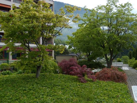 Hotel Alpenblick: hotel garden