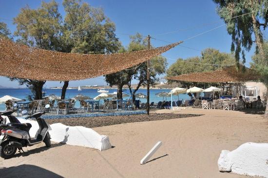 Krios Beach Camping: Beach bar