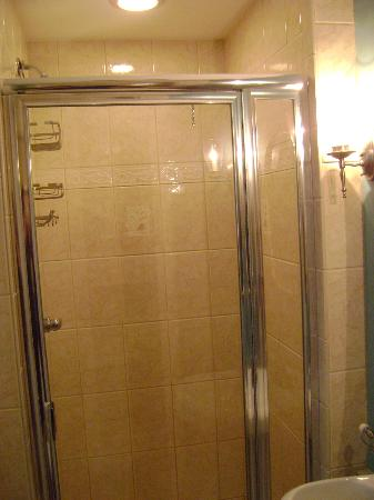 Applewood Manor Bed & Breakfast: Shower with waterproof recessed light