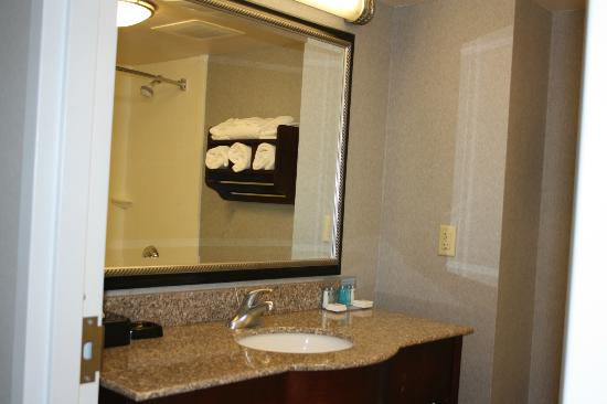 Hampton Inn and Suites Cape Cod - West Yarmouth: Grand miroir