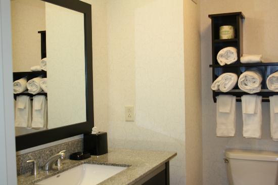 Hampton Inn Portland Downtown - Waterfront : Miroir