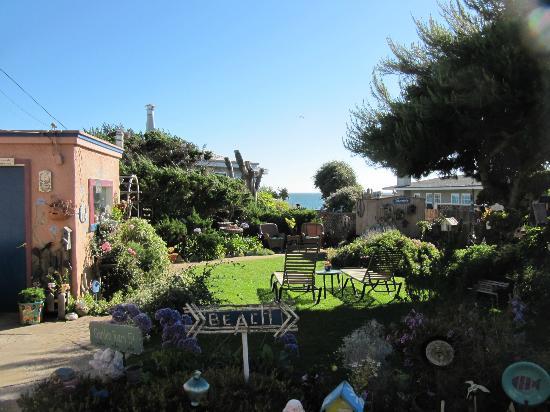 Seaside Motel: Garden