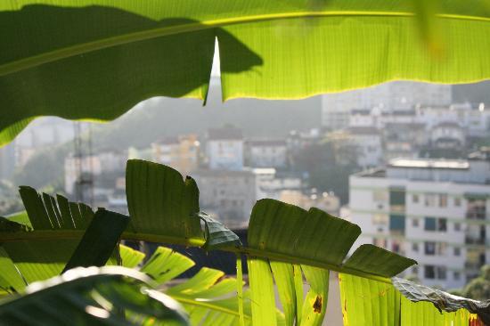 Canto da Carambola: Aussicht aus dem Garten - nur, wenn man sie möchte