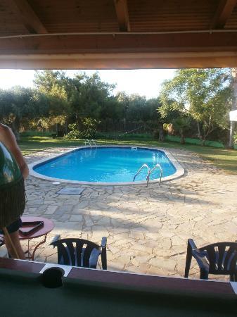 Ibiscus Hotel: Pool