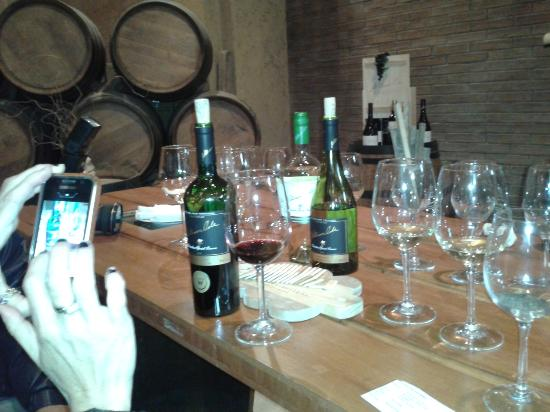 Al Ramirez Wine Tours