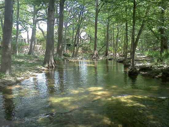 写真Cypress Creek Cottages枚