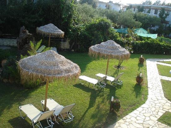 Allea Hotel Apartments Toroni: hotels garden