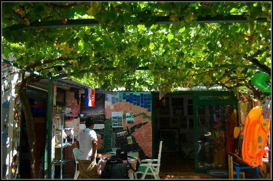 Pula Art Hostel : Terrace Vine yard