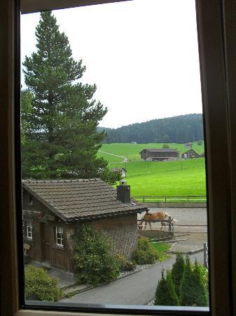 Bären - Das Gästehaus: vue de la cage d'escaliers. On dirait pas qu'on est à côté d'une ferme c'est hyper clean! Gais (