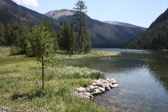Flat Creek Ranch : View at the ranch