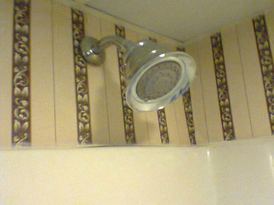 Holiday Inn Philadelphia South-Swedesboro: Best showerhead!!