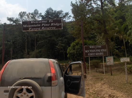 Mountain Pine Ridge Forest Reserve: Entrada a la reserva