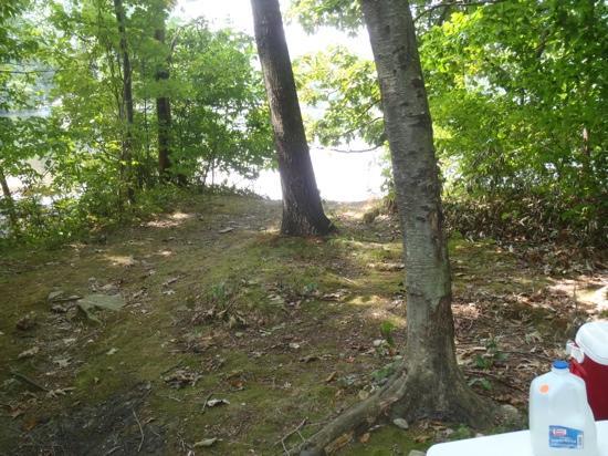 Prospect Lake Park: the dam site