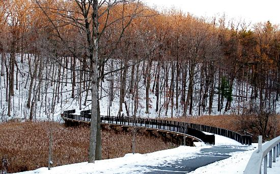 Durand Eastman Park: Hike/Bike Trail along lake and through the park