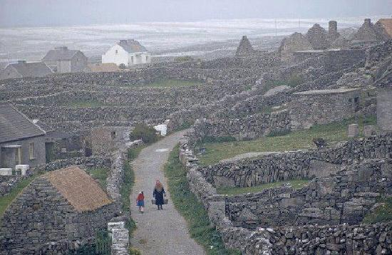 Emohruo Bed and Breakfast: Take a cruise to the Aran Islands from Doolin