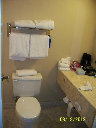 Embassy Suites by Hilton Indianapolis - North: Very small bathroom. Door is hitting the bathtub